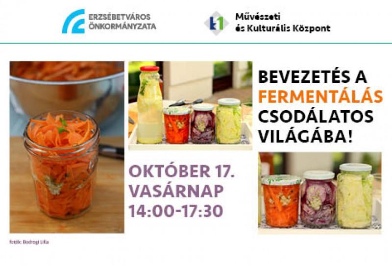 Bevezetés a fermentálás csodálatos világába!
