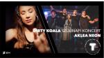 Dirty Koala 7 éves szülinapi koncert / Aklea Neon